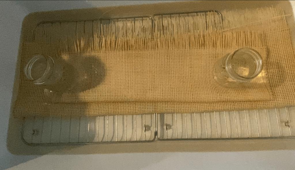 soaking cane webbing in water